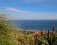 Ref 439 El Faro – 16 general view