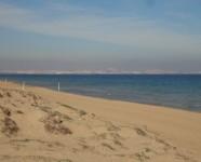 Ref 443 Altet 24 beach