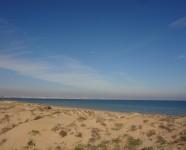 Ref 443 Altet 25 beach2