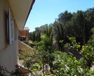 Ref 469 Novamar21-2 – Green view