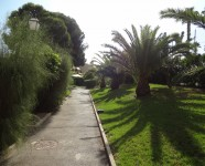 Ref 479 El Faro3 – Urbanization1