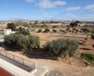 Ref 620 El Altet2 – View plot1
