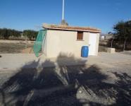 Ref 620 El Altet24 – Shed1
