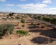 Ref 620 El Altet34 – View plot2