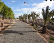 Ref 620 El Altet9 – Garden1