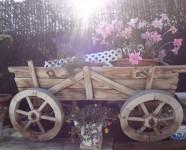 Ref 405 Montefaro30 – Garden3