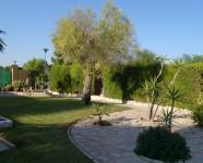 Ref 418 Valverde25 – Garden2