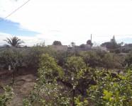 Ref 419 La Marina18 – Garden4