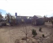 Ref 419 La Marina36 – Garden3