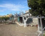 Ref 419 La Marina6 – Garden1